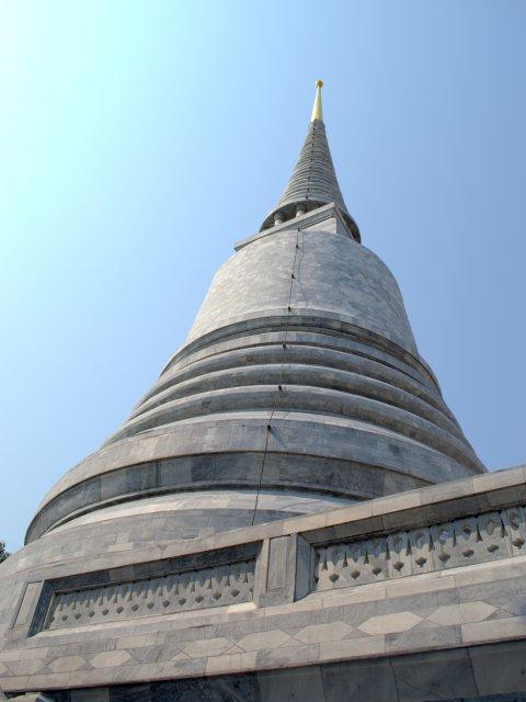 manatee stupah2
