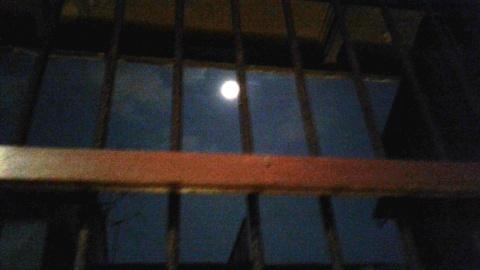 caged mood