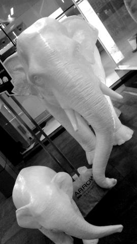 elephants-mono