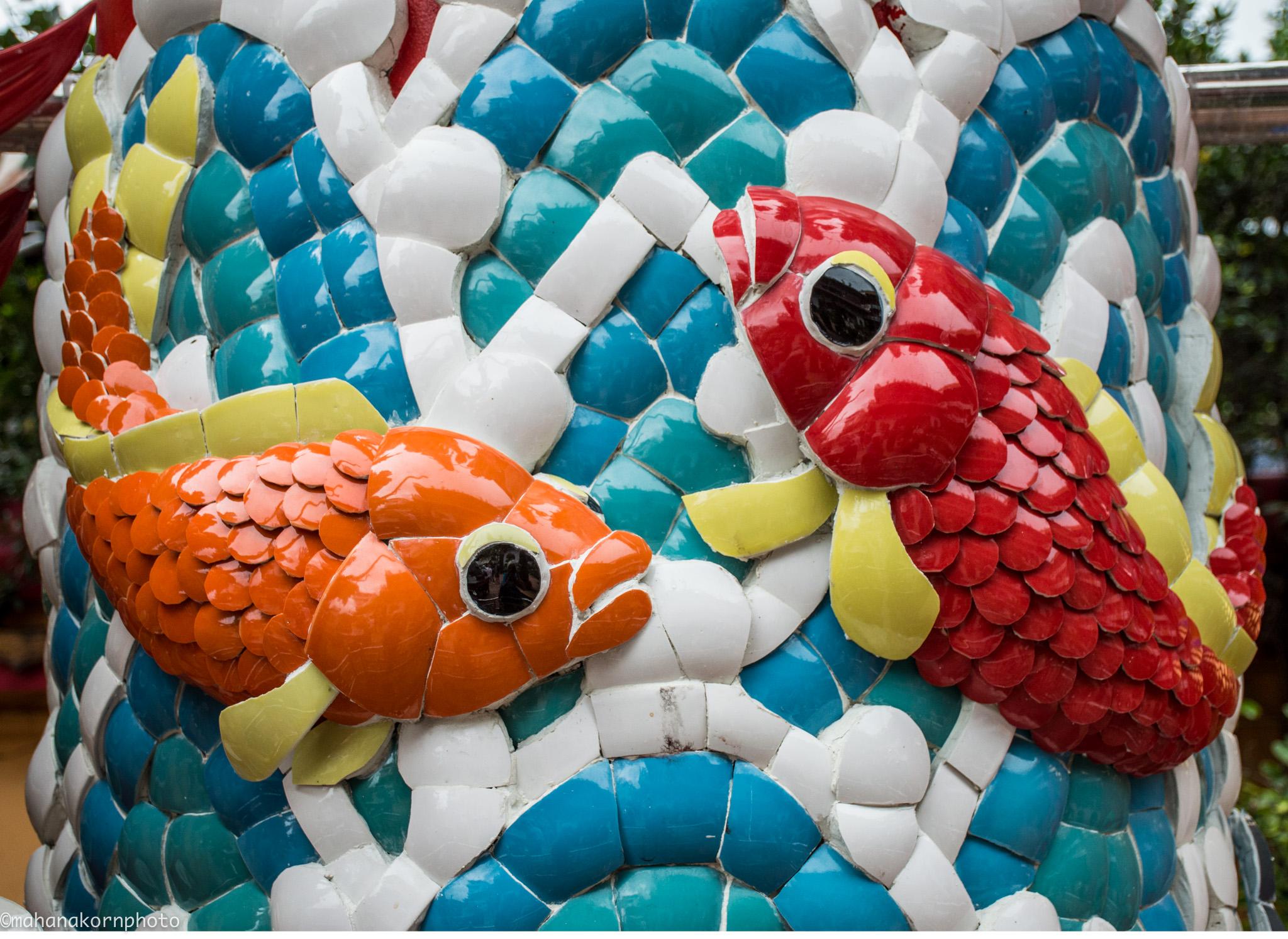 m fish01180818
